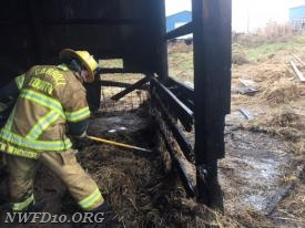 NWFD Firefighter John Grauel works to make sure all hot spots in the hay have been extinguished.  Photo by David Coe